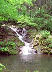 美しい水を川へ